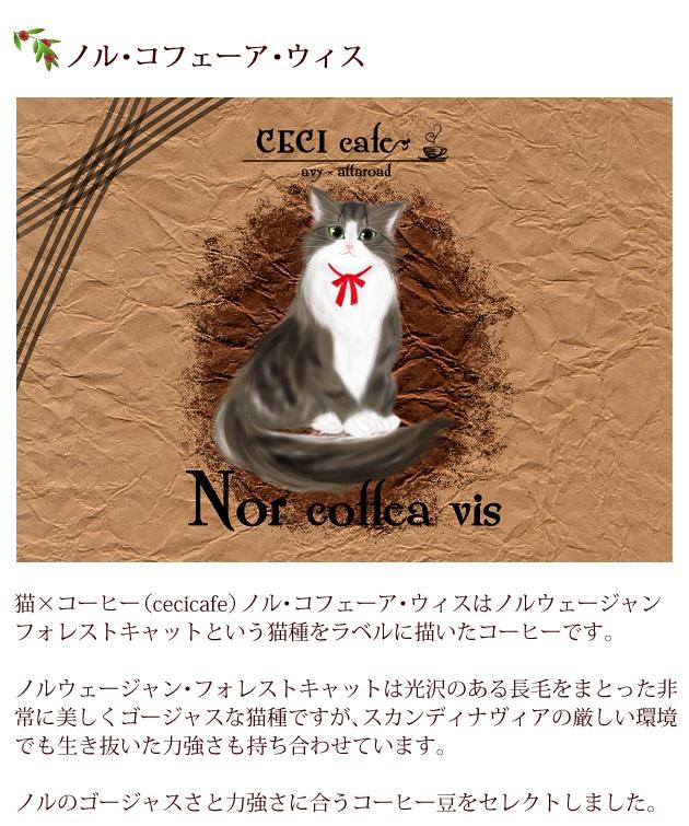 猫×コーヒー(cecicafe)ノル・コフェーア・ウィスはノルウェージャン・フォレストキャットという猫種をラベルに描いたコーヒー。 ノルウェージャン・フォレストキャットは光沢のある長毛をまとった非常に美しくゴージャスな猫種ですが、スカンディナヴィアの厳しい環境でも生き抜いた力強さも持ち合わせています。 ノルのゴージャスさと力強さに合うコーヒー豆をセレクト。