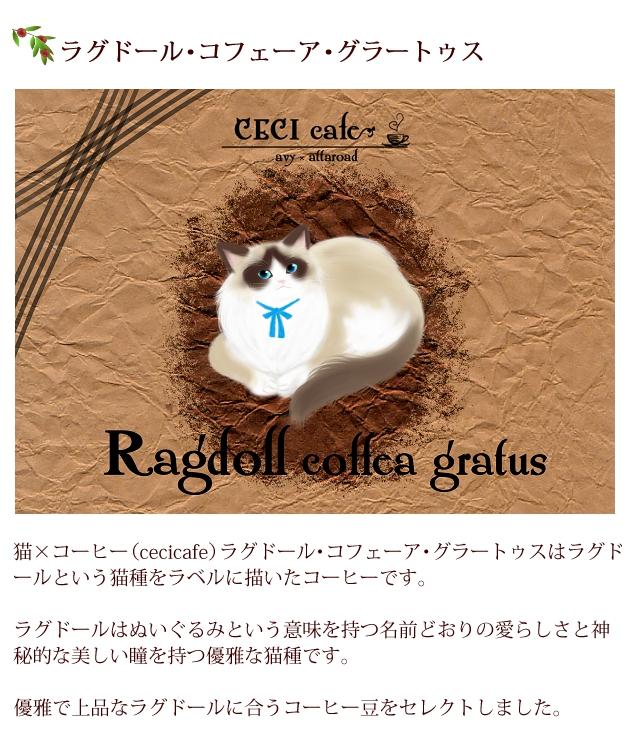 猫×コーヒー(cecicafe)ラグドール・コフェーア・グラートゥスはラグドールという猫種をラベルに描いたコーヒー。ラグドールはぬいぐるみという意味を持つ名前どおりの愛らしさと神秘的な美しい瞳を持つ優雅な猫種。優雅で上品なラグドールに合うコーヒー豆をセレクト。