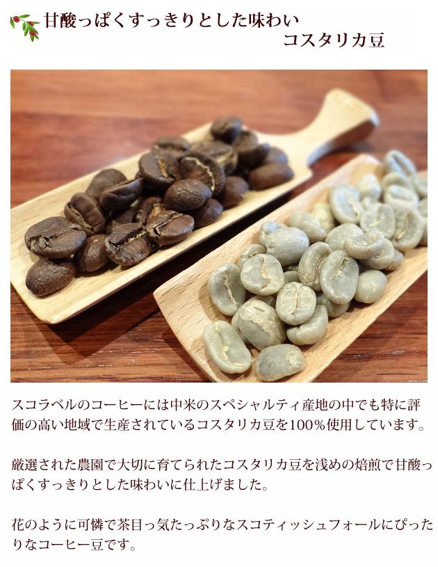 スコラベルのコーヒーには中米のスペシャルティ産地の中でも特に評価の高い地域で生産されているコスタリカ豆を100%使用しています。厳選された農園で大切に育てられたコスタリカ豆を浅めの焙煎で甘酸っぱくすっきりとした味わいに仕上げました。可憐で茶目っ気たっぷりなスコティッシュフォールドにぴったりなコーヒー豆です。